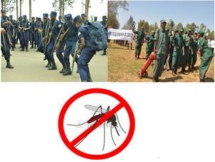 Rwanda: Malaria yabiciye none Polisiyahuruye