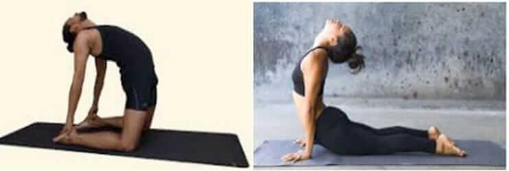 Yoga ou  yogathérapie,quel bénéfice pour lasanté?