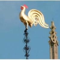 Histoire du COQ qui trône  au-dessus de nos églises