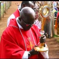 Prière d'intercession pour le Père Ubald: 10-17 janvier