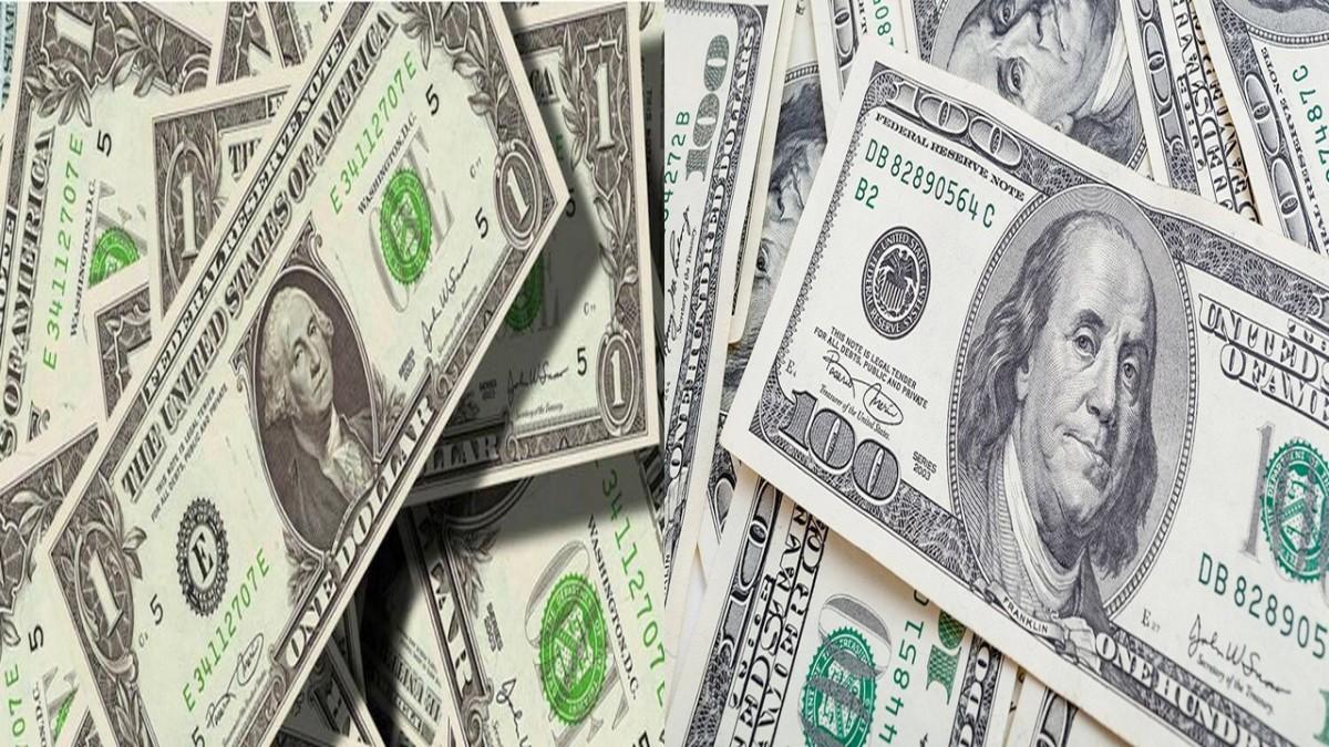En quoi les dollars sont-ils distincts de voseuros?